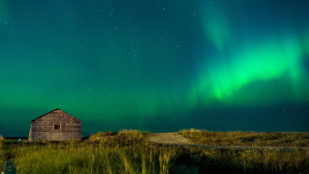 Northern Lights Aurora Borealis visible against a starry sky in Churchill, Manitoba, Canada. Grass, a path and small building visible in the foreground.