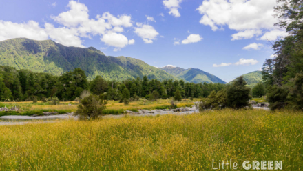 Lewis river between yellow and green grasses in the foreground and mountains in the background